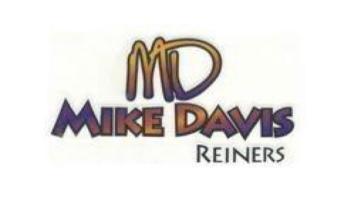 mike davis.pdf